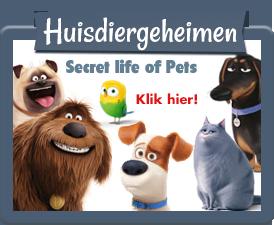 Huisdiergeheimen producten en speelgoed in één webshop